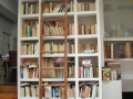thierry_lecrivain_bibliotheque05